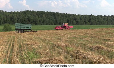 tractor in field - red farm tractor work in village field...