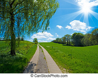 uphill country track in agrarian landscape