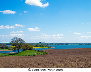agrarian landscape in northern Germany - countryside scenery...