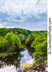 landscape green forest and river