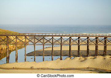 Railway trestle over seashore