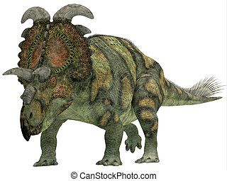 Albertaceratops over White - Albertaceratops was a...