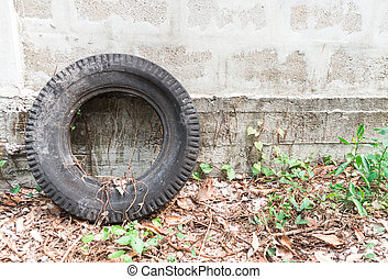 Old Tire Laying on a Wall in the Abandoned Garden