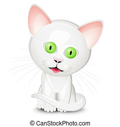 Little white cat isolated on white background
