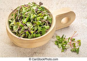 organic micro greens (kale, mustard, pea, herbs) on a...