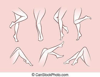 Vector woman legs set. Girl body, beautiful and sexy, beauty...