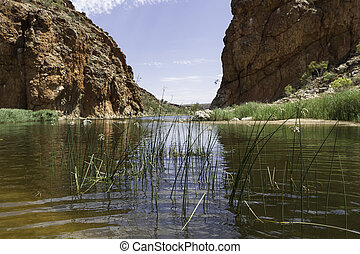 Alice Springs in Northern Territory, Australia - This photo...