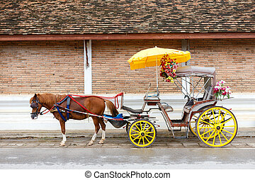 A Carriage with brown horse