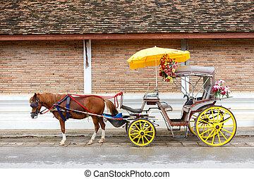 Um, carruagem, com, Marrom, cavalo,