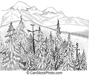Fir Forest and Mountains - pen-and-ink drawing