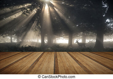 Red deer stag illuminated by stunning sun beams through forest landscape on foggy Autumn Fall morning with wooden planks floor