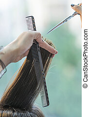 hairstylist cutting hair of female customer detail