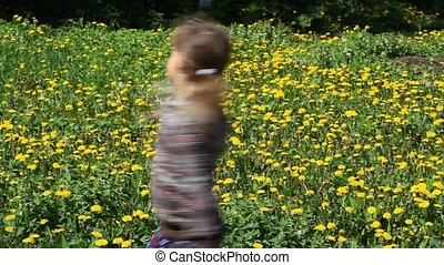 a dandelion - little girl blowing on a dandelion