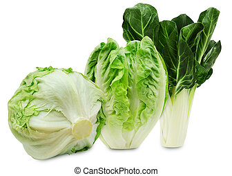 Set of three varieties of lettuce