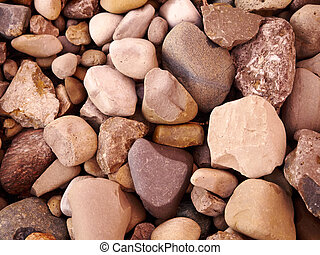Close Up of Rocks on the ground, many different shapes