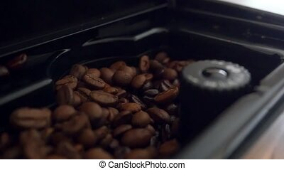 freshly roasted coffee beans in a Coffee roaster. Slowmotion