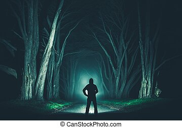 Men with Powerful Flashlight in the Old Trees Alley at...