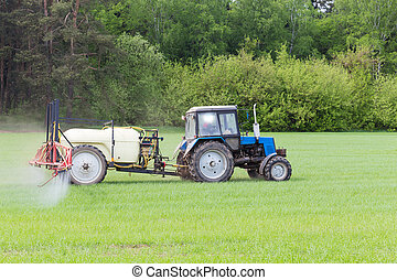 agricultural machine fertilizes a green field in spring