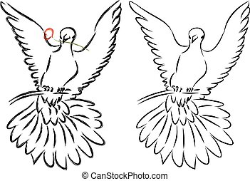 Dove Line Art - Pigeon or dove in simple line art style.