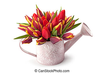 Watering pot with spring flowers - Watering pot with a...