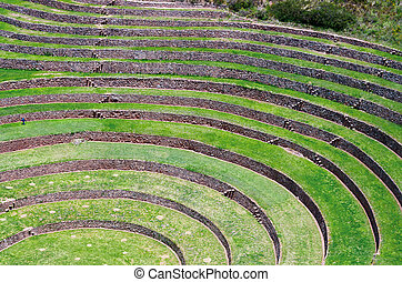 Agricultural terraces in Moray, Cusco, Peru