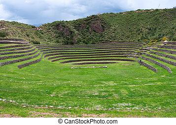 Agricultural terraces in Moray, Cusco, Peru
