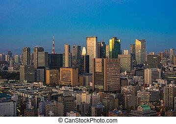 Tokyo aerial panoramic view at sunrise