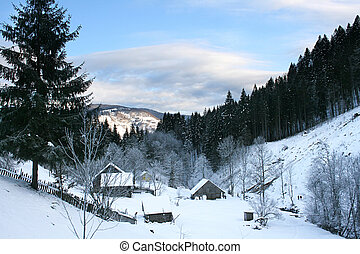 Village in the Carpathian Mountains