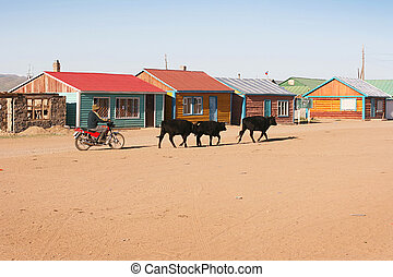 Traditional mongolian village in the sunshine day