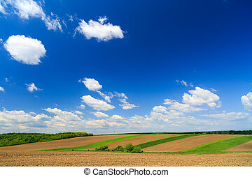 summer farmland landscape with patchwork fields and...