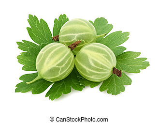 Three ripe green gooseberries with leaves (isolated)