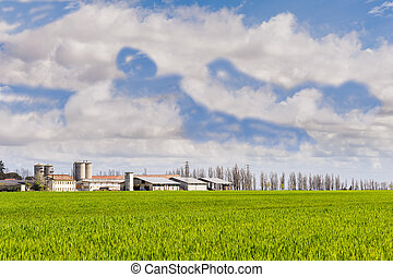 Agricultural landscape with farm and silos and a sky with...