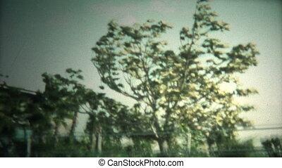 (8mm Vintage) Hurricane Blowing Big