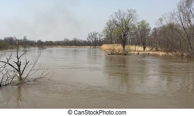 Landscape great river in the spring