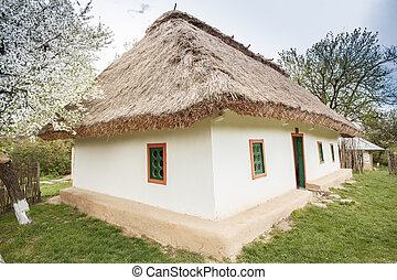 Ukraine 19th century - typical national home in Ukraine in...