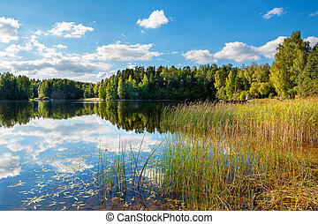 Forest lake Estonia - View of the Lake Paunkula Estonia,...