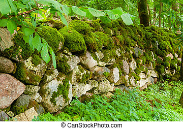 Mossy wall - Old granite wall in forest, covered with moss...