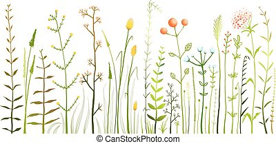 Wild Field Flowers and Grass on White Collection - Rustic...