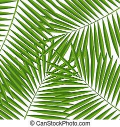 Palm Leaf  Background Vector Illustration EPS10