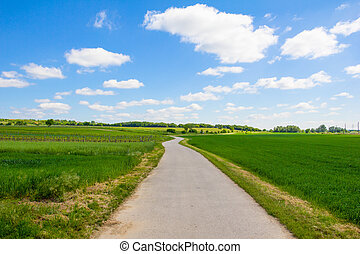 Bike Way Lake Neusiedl - Taken on May 11th, 2015 near Oggau...