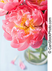 beautiful pink peony flower bouquet in vase