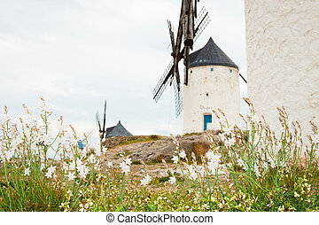 Vintage windmills in La Mancha - Vintage widnmills in the...