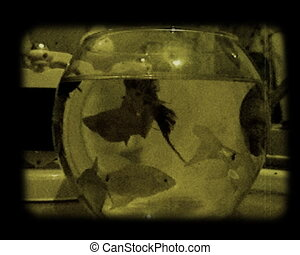 home aquarium - the home aquarium with small fishes stylized...