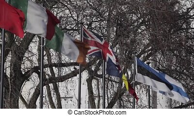 Flags - International flags at poles with strong wind
