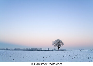 Winter landscape after sunset with clear blue sky