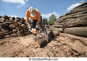 Cutting logs - Worker cutting logs with a chainsaw