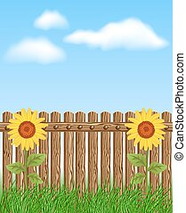 Wooden fence on grass with sunflower