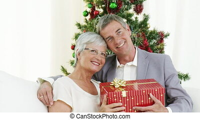 Happy Grandparents holding christmas presents and smiling at...