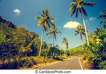 Asfalt road with palm trees - Nice asfalt road with palm...