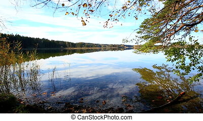 View to a lake in autumn - View to a lake with moving leaves...